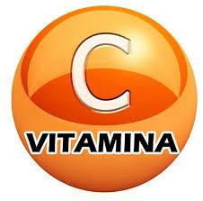 Probióticos herbolario con vitamina C: nota la diferencia en tu salud
